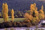 Río Ara / Ara river