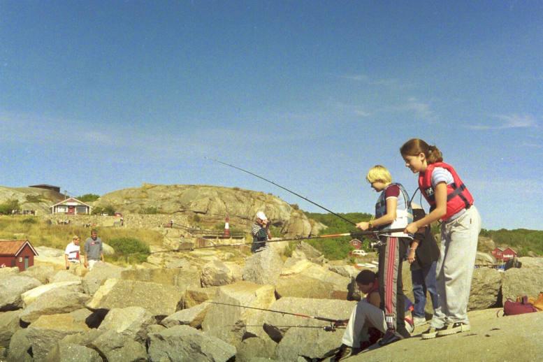 Color Neg. Coast of Norway #2