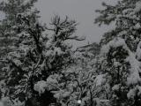 Jan 05 Snow