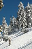 Snow of CA/Mountain Baldy