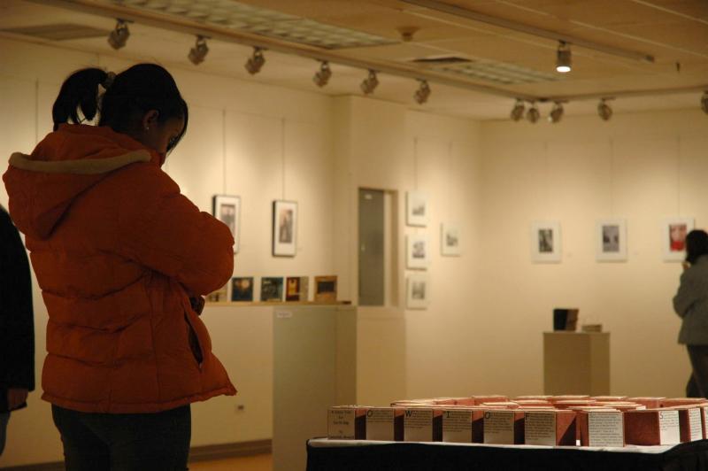 Visitor viewing Deborah Arnolds work VMG05 0051.jpg