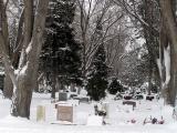 Friedhof P1010170.jpg