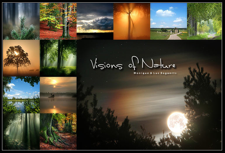 Visions Of Nature logo