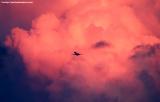 MD80 takeoff sunset aviation cloud stock photo