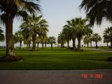 Doha , 14 .jpg
