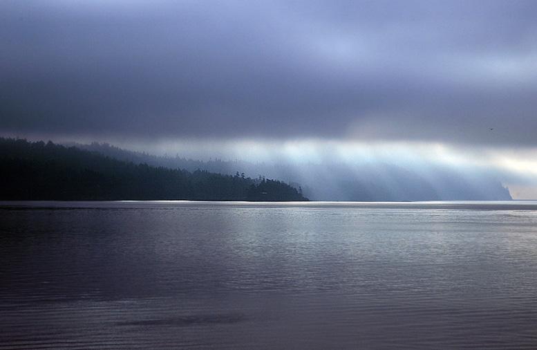 Rain, Fog & Light