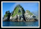 Chiswell Islands