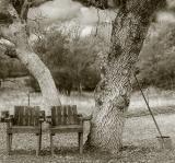 Ranch Chairs new.jpg