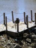 Sloppy Dock