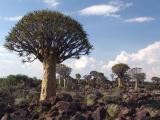 Namibia 0047s.jpg