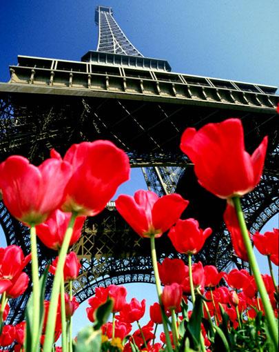 Paris - Eiffel Tower (1977)