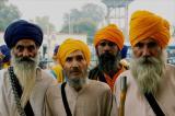 Sikh elders