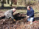 John Brown and Dan Veazey, planting Magnolia 'Sunsation'
