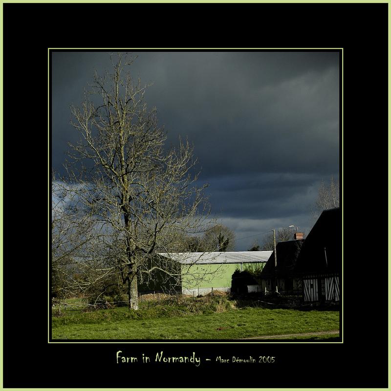 Farm In Normandy
