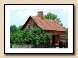 Log House with Fig Bush