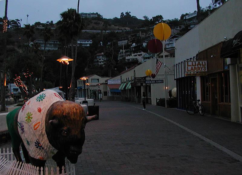 Buffalo art in the early morning