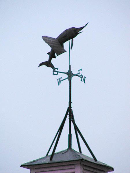 swordfish vane