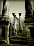 windsor ruins (bw2)