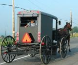 Amish Buggy Intercourse