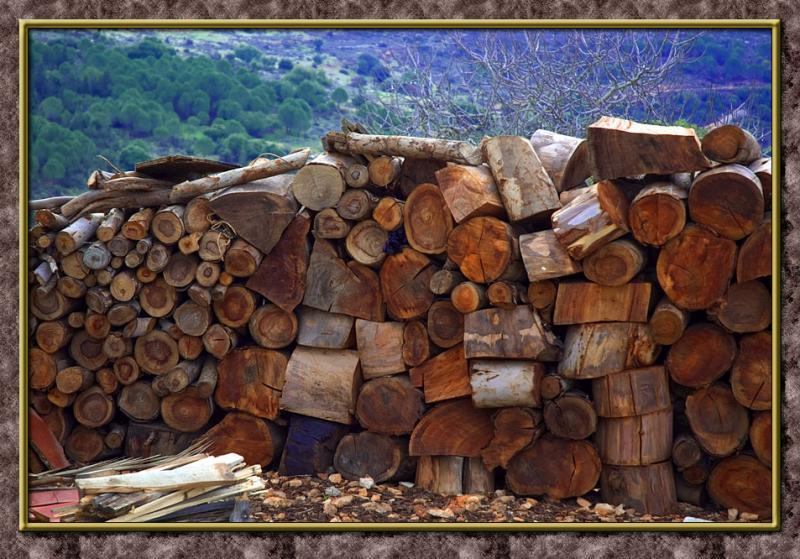 Firewood III