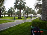 Doha , 13 .jpg