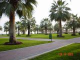Doha , 15 .jpg