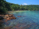 My Favourite Island