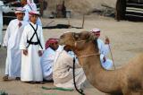 Dubai Cultural Festivities
