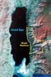The Wadi Mujib Reserve protects are large wild area along the Dead Sea