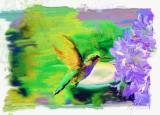 a hummingbird homage to neiman.jpg