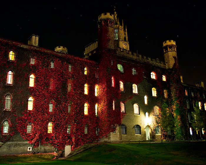 Red Vined Castle