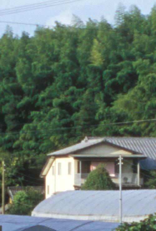N05-15x.jpg