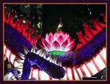 Buddha's Birthday Lantern Parade - 39