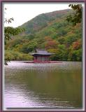 Floating Temple (Spring, Summer, Fall (Autumn), Winter... and Spring)