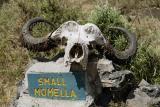 Small Momella sign