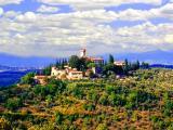 Toscana,- Verazzano Castle... Vino Paradizo....