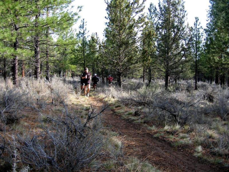 The lead pack heading towards aid station 2