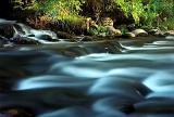 Causey creek