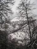 Durant l'hiver
