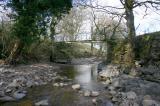 Wise Eels Bridge.jpg