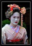 Geisha image 004
