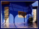 Majorelle house - Marrakech
