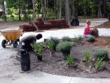 Landscapers Jeanne and Arthur arrange plants in the front circle