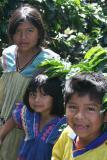 Panama indians