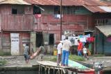 poor piggy being slaughetered in Almirante where we took our boat to Bocas del Toro