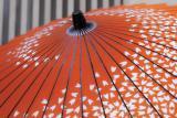 IMG00227umbrella 3.jpg