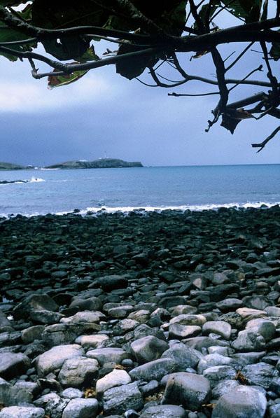Ilha-Siriba
