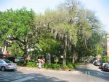 street in Savannah, Georgia
