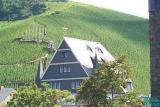 Vineyards at Bernkastel
