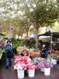 San Francisco Flower market